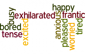 speech spotlight wordle